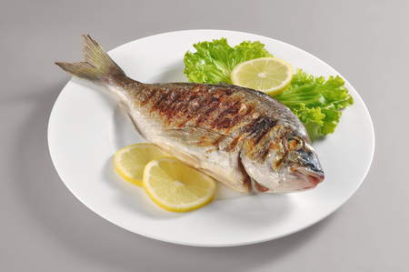 gilthead bream: Dish with grilled fish gilthead bream portion