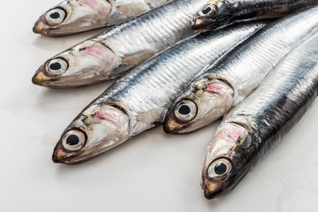 Detail of a pile of natural fresh anchovies on white background