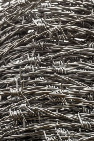 Detail of Whorl of barbed wire forming a coil