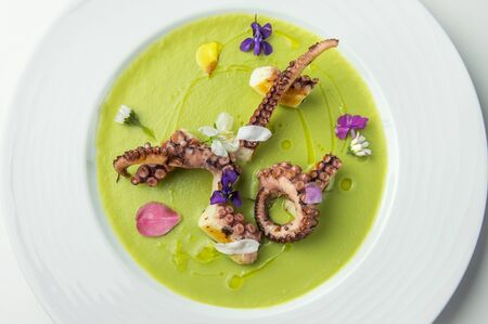 Dish of Grilled octopus on pea cream with flowers isolated on white Banco de Imagens