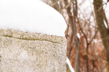 brick foam under snow in winter near the tree