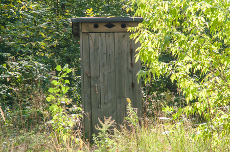 latrine: wooden outside toilet facilities among the green forest