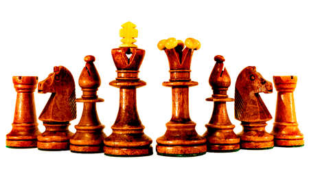 Set of Brown chess pieces