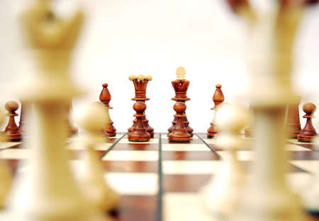 Black set through white king and queen Stock Photo - 2993508