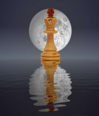 White king reflected in moon light Stock Photo