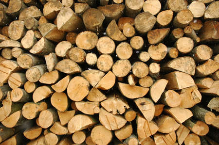 Cut wood waiting for Transport Stock Photo