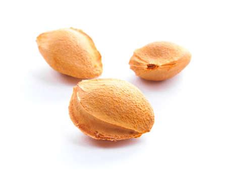 pips: Kleurrijke abrikoos pitten geïsoleerd op een witte achtergrond.  Stockfoto