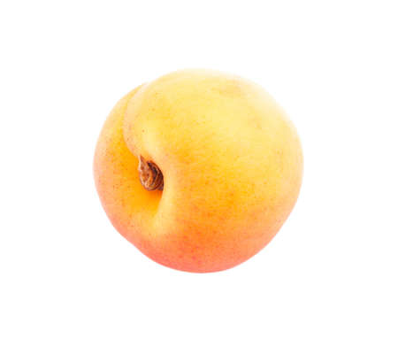 One juicy apricot isolated on white background. Stock Photo