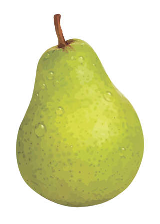 One vector pear isolated on white background.