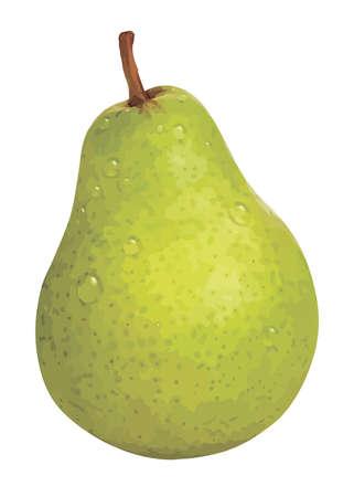 pera: Un vector de pera aisladas sobre fondo blanco.