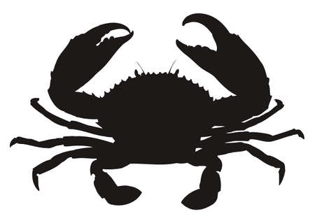 Single crab silhouette isolated on white background