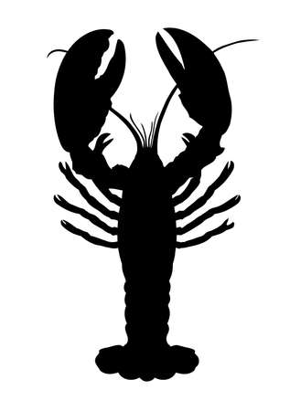 lobster: 단일 가재 흰색 배경에 고립
