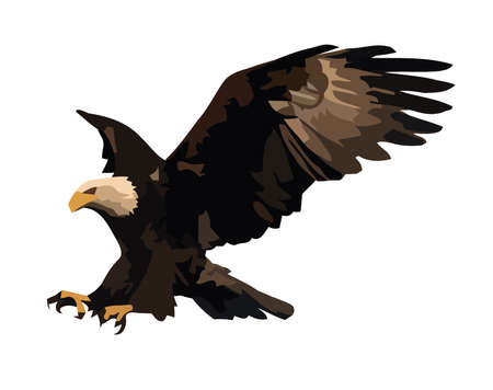 illustration of the landing eagle isolated on white