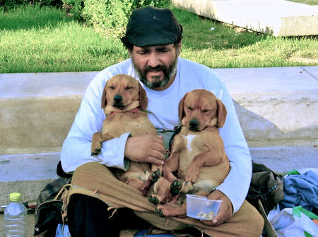 beggar: beggar with twin puppy Editorial