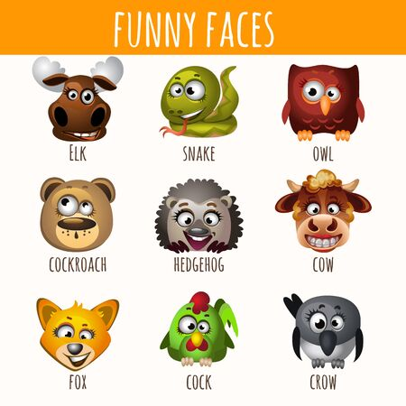 funny: Funny faces of animals