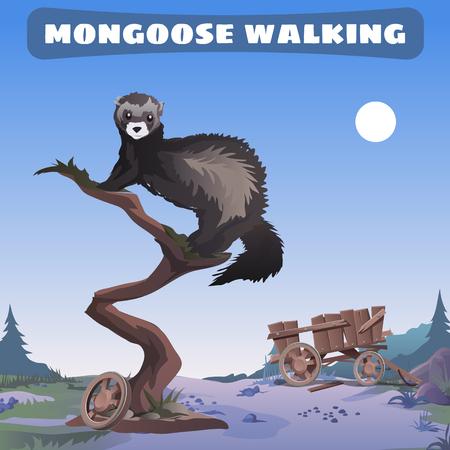 mongoose: mongoose walking through the wild West Illustration