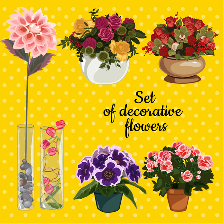 Set of potted plants with flowers on a yellow background