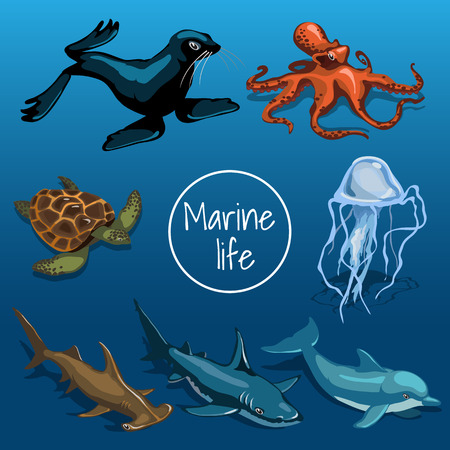 pulpo: Colección de animales marinos