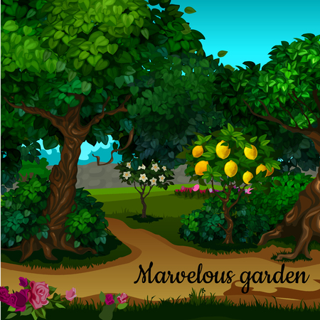 citrus tree: The garden with citrus tree and green trees and text