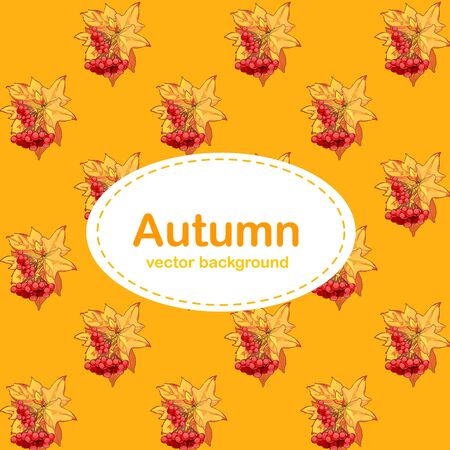 other space: Autumn background with Halloween pumpkin. Card with space for text. Bright background for a poster, invitation or other postcard