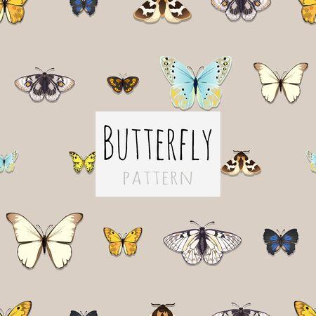 パターン、テキストのためのスペースを持つ蝶、蝶のサンプルのセット