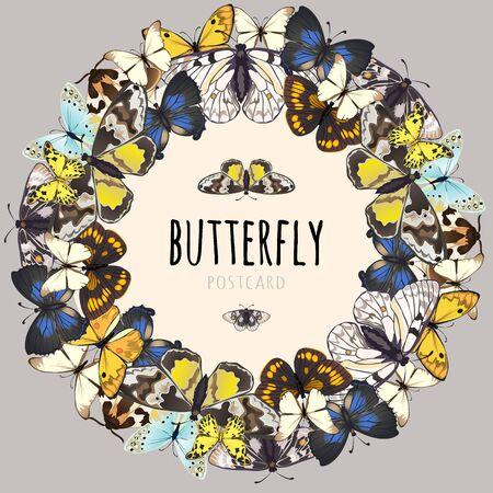 ポストカード、テキストのためのスペースを持つ蝶、蝶のサンプルのセット  イラスト・ベクター素材