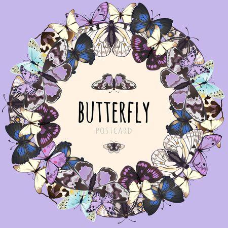 ポストカード、ピンクの背景に蝶のサンプル テキストのためのスペースを持つ蝶のセット  イラスト・ベクター素材