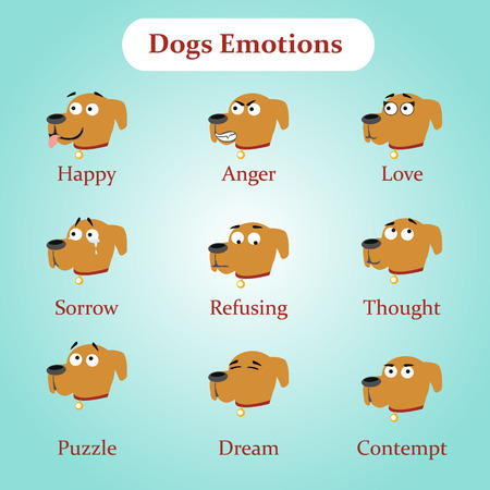 refusing: Dog emotions: happy, anger, love, sorrow, refusing, thought, puzzle, dream, contempt