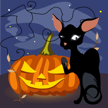 ciel sombre: A black cat with a grinning pumpkin on a dark sky background