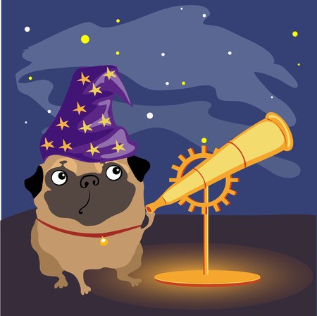 heavenly: Scientist dog pug watching the stars, heavenly background, night