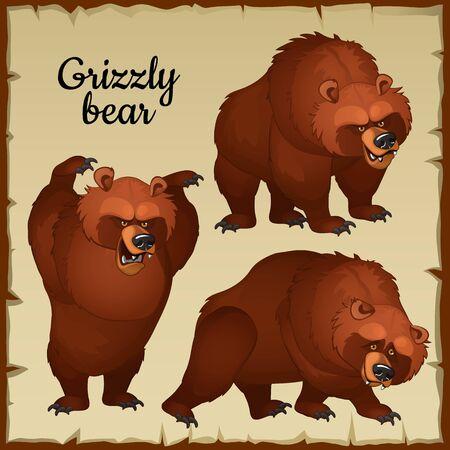 Angry brown bear attacks
