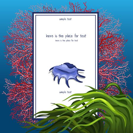 sea grass: Texture of seashell coral with algue and vertical card for text