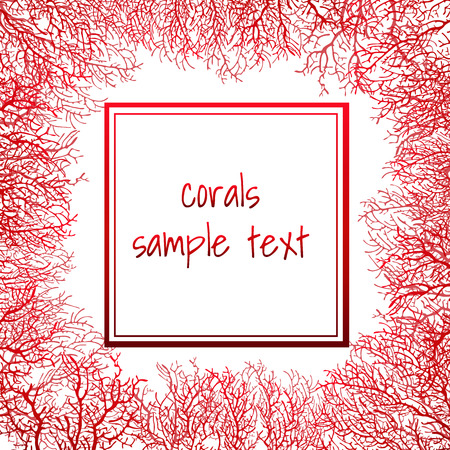 Texture of red coral in the form of a frame with text