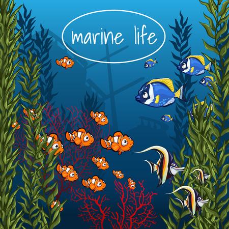 明るい色の海洋生物  イラスト・ベクター素材