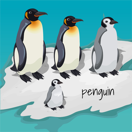 Three big penguins and one little penguin Illustration