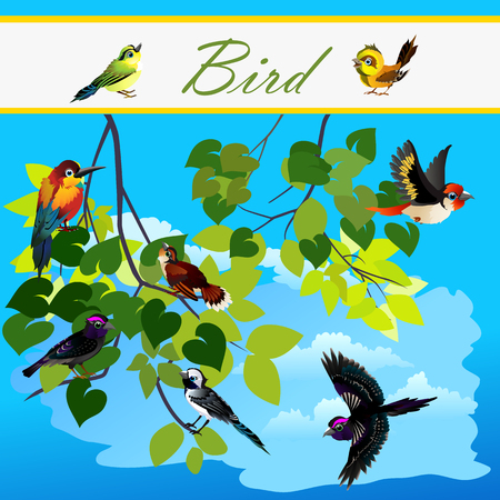 Birds on the branches tree