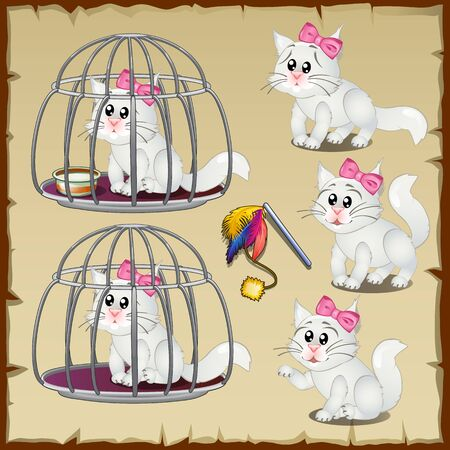 confined: Fluffy white cats trapped in a steel cage