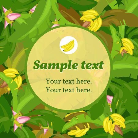 banane: Banana carte verte avec un espace pour le texte ronde