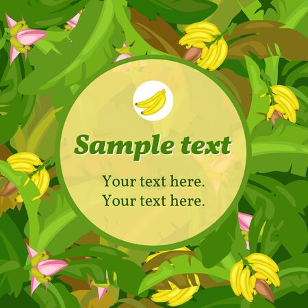 banana leaf: Banana green card with round space for text Stock Photo