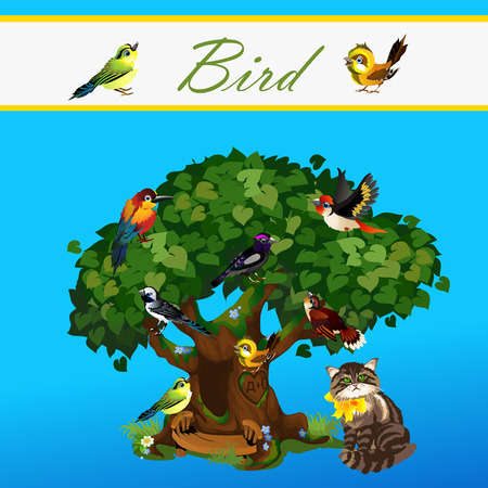 allusion: Card with colorful birds on the tree and near cat