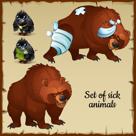 Sick and healthy bears and birds, animal characters with different complaints