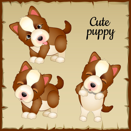 wagging: Three expressions of emotions of cute puppies