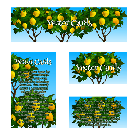 image size: Four original cards of different size and shape with the image of the lime trees Illustration