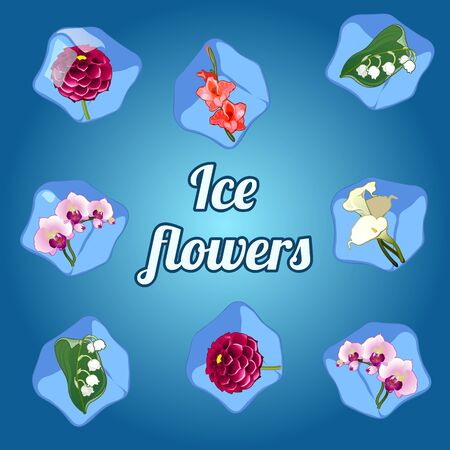 campanula: Beautiful vector flowers frozen in ice cubes Illustration