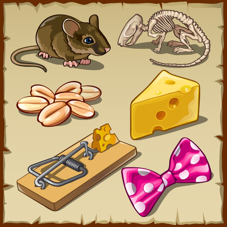 nibble: Big vector mouse set and symbols, cheese and other Illustration