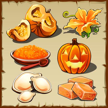 pumpkin seeds: Vector set of pumpkin, cereals, seeds and other food