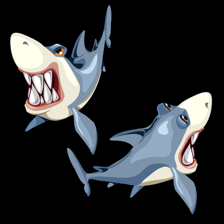 Two vector fish sharks on a black background