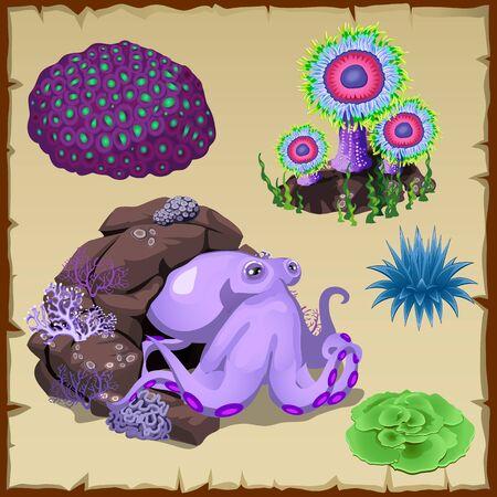 mollusc: Purple octopus and underwater vegetation, vector set Illustration