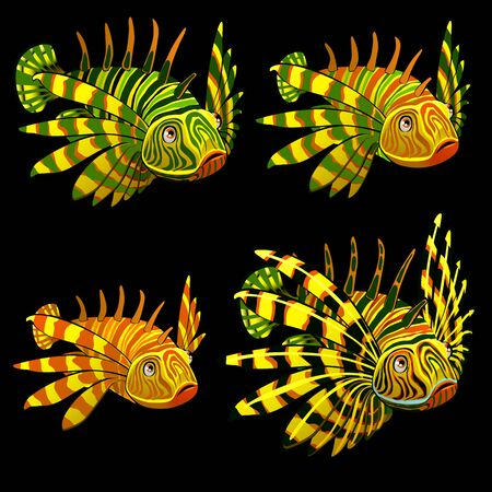 soldier fish: Set of four yellow fishes rooster, cartoon vector characters Illustration