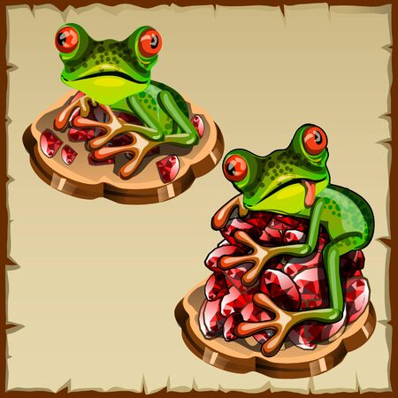esotericism: Funny vector frog picture on a pile of precious stones